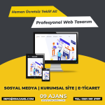 Kuşadası Web Tasarım